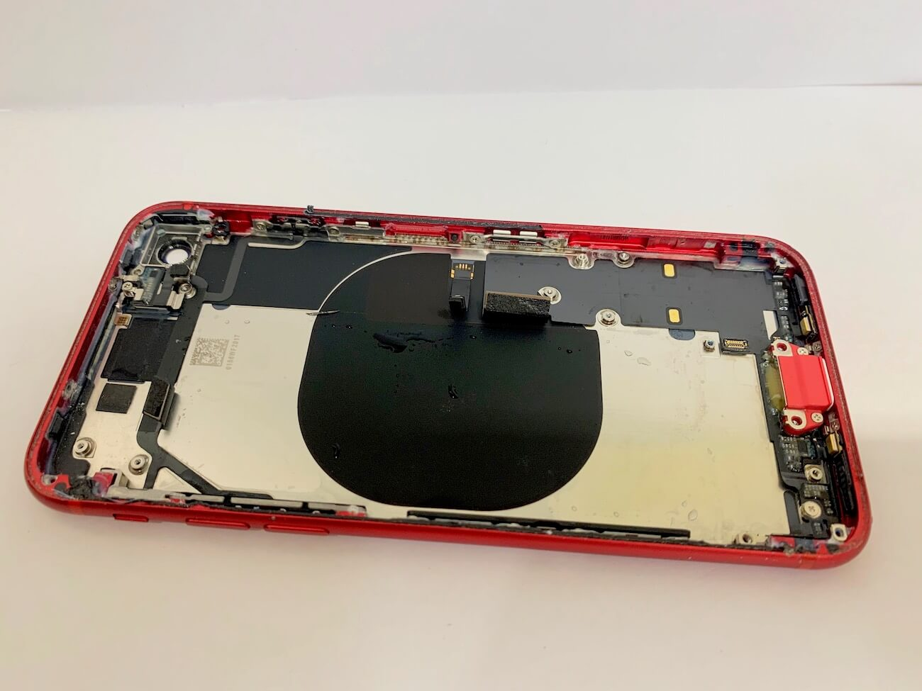 写真は、分解中のiPhoneSE(第二世代)